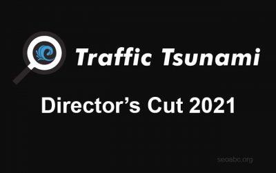 OMG Traffic Tsunami 2021 / Director's Cut 2021