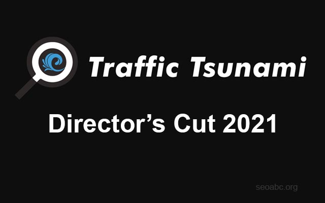 OMG Traffic Tsunami 2021 / Director's Cut 2021